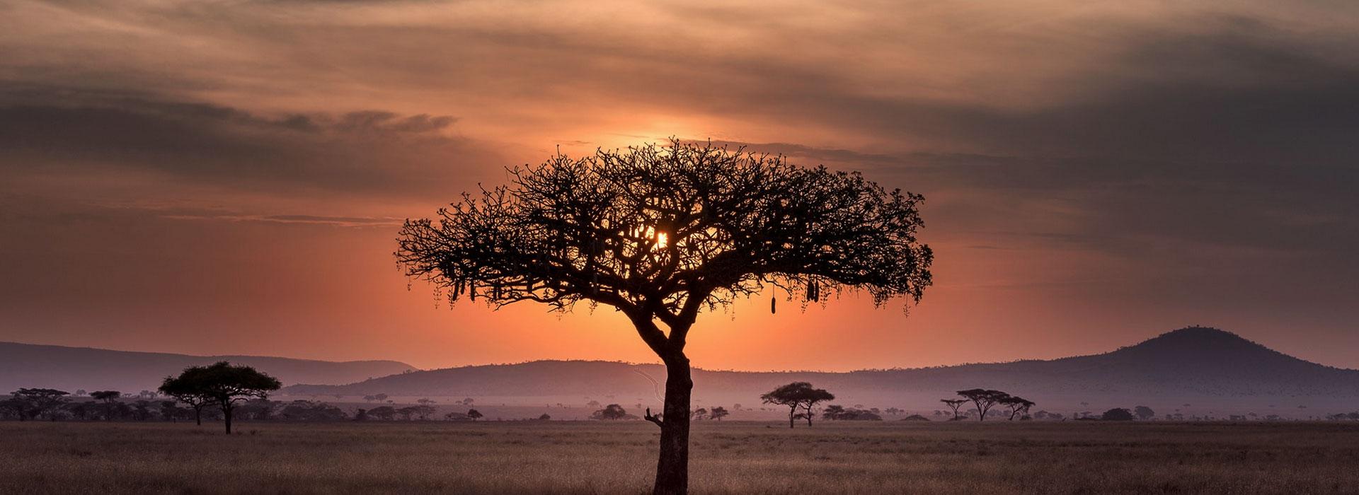 About Tanzania