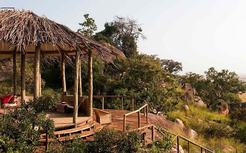 Tanzania Luxury Safari