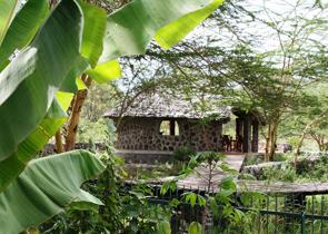 Tanzania Birding Safari Accommodation