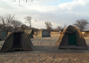 Nyani Campsite